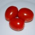 トマトの収穫 09-06-25